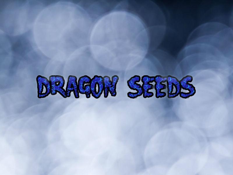 ドラゴンシーズ-最終進化形態-(PS)感想・レビュー