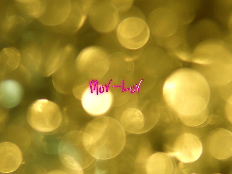 マブラヴ(XBOX360)感想・レビュー
