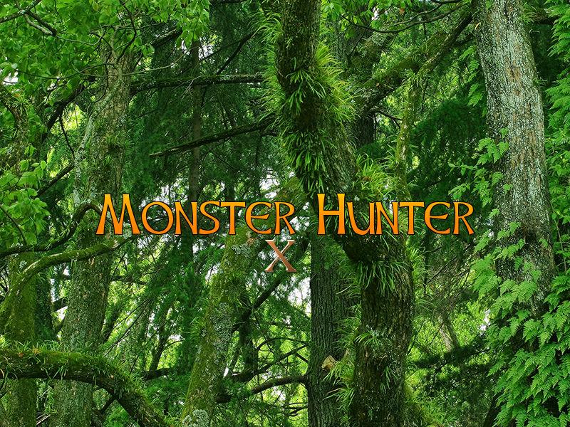 モンスターハンタークロス(3DS)感想・レビュー