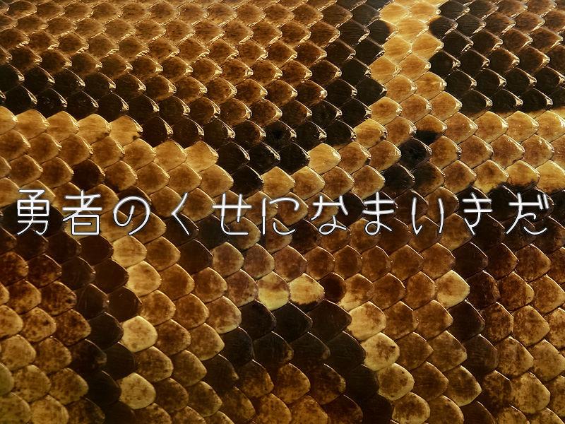 勇者のくせになまいきだ(PSP)感想・レビュー